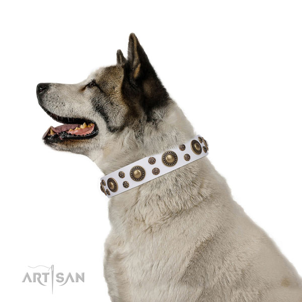 Akita-Inu top quality genuine leather dog collar with adornments
