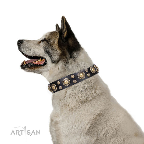 Akita-Inu unusual natural genuine leather dog collar with embellishments