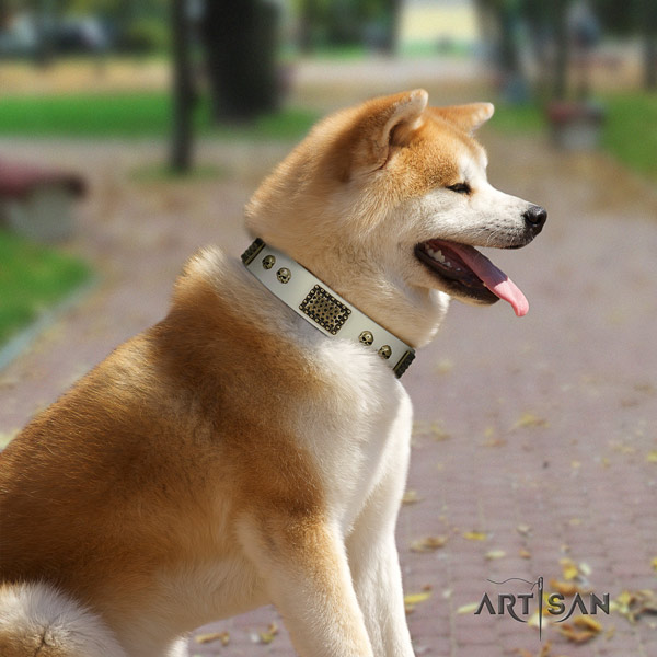 Akita Inu full grain leather dog collar with top notch adornments