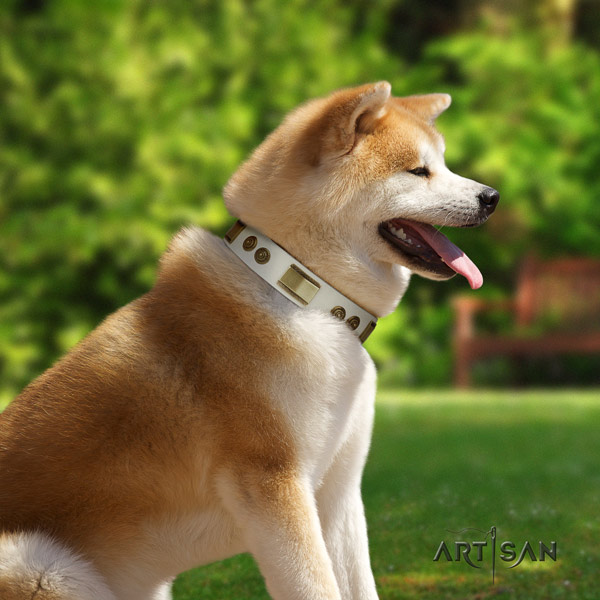Akita Inu leather dog collar with exquisite embellishments