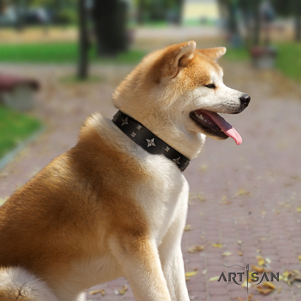 Akita Inu fancy walking full grain genuine leather collar with adornments for your doggie