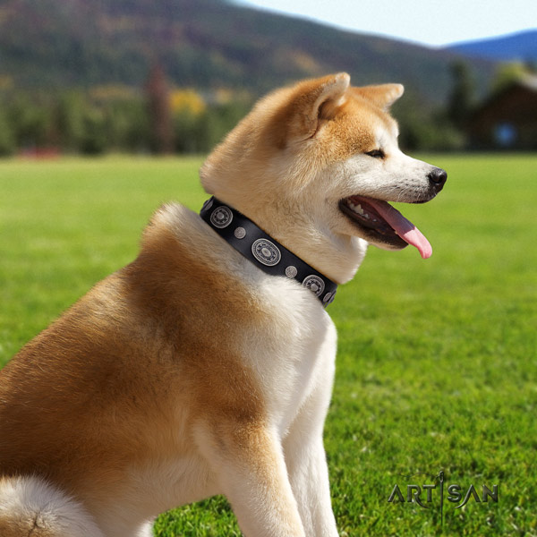 Akita Inu genuine leather dog collar with designer adornments