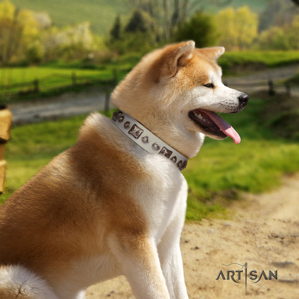 Akita Inu full grain leather dog collar with unique decorations
