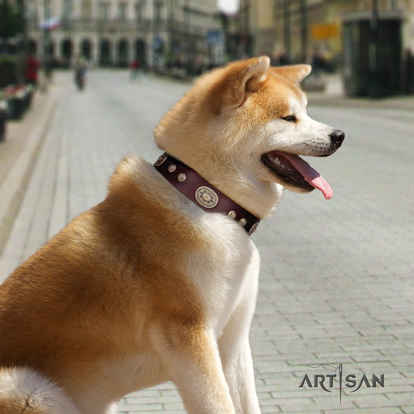 Akita Inu leather dog collar with exceptional decorations