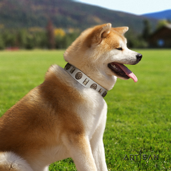 Akita Inu easy wearing full grain leather collar with adornments for your four-legged friend