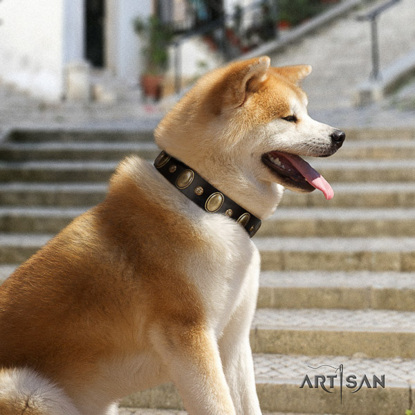 Akita Inu daily walking natural leather collar with adornments for your four-legged friend
