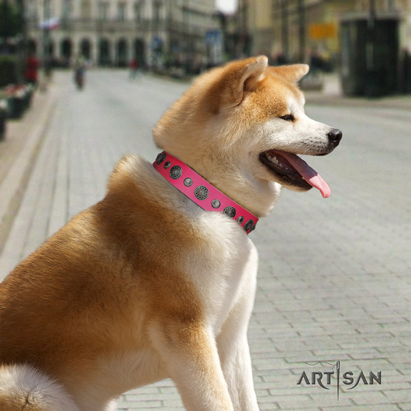 Akita Inu embellished genuine leather dog collar with unusual decorations