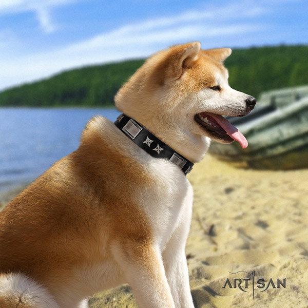 Akita Inu studded leather dog collar with unusual embellishments
