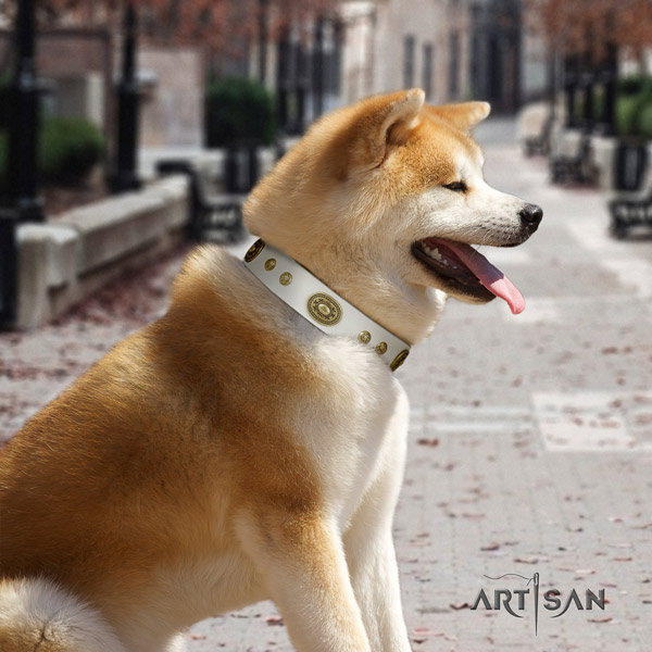 Akita Inu full grain leather dog collar with designer decorations