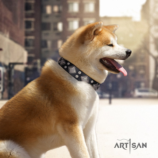 Akita Inu full grain leather dog collar with exquisite studs