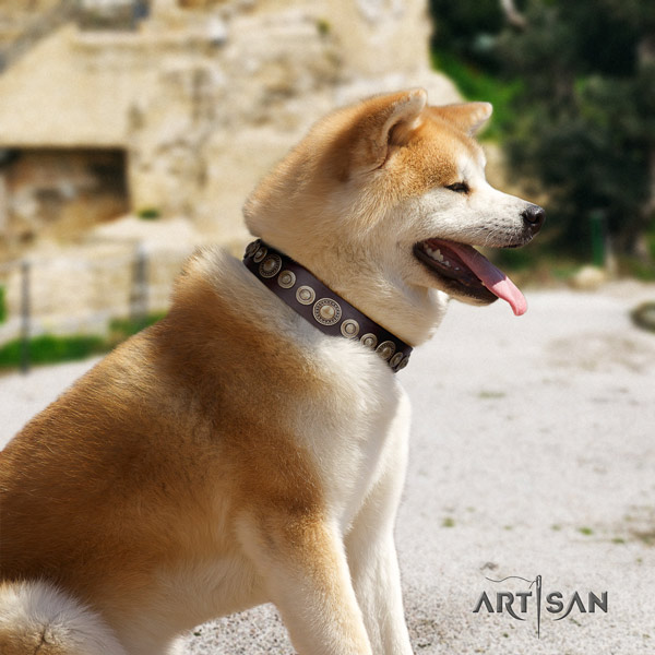 Akita Inu leather dog collar with incredible embellishments