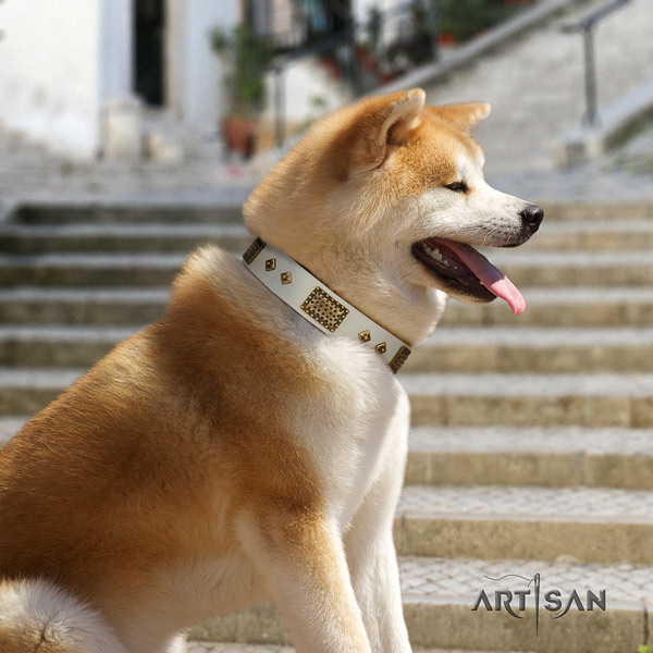 Akita Inu full grain leather dog collar with extraordinary embellishments