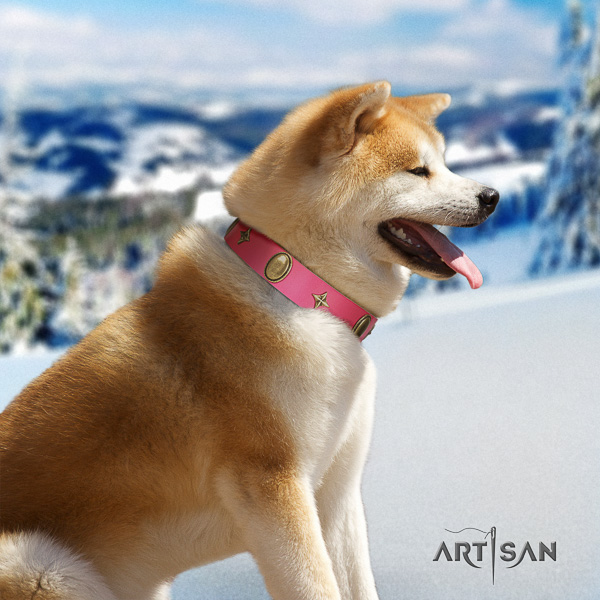Akita Inu handy use leather collar with adornments for your canine