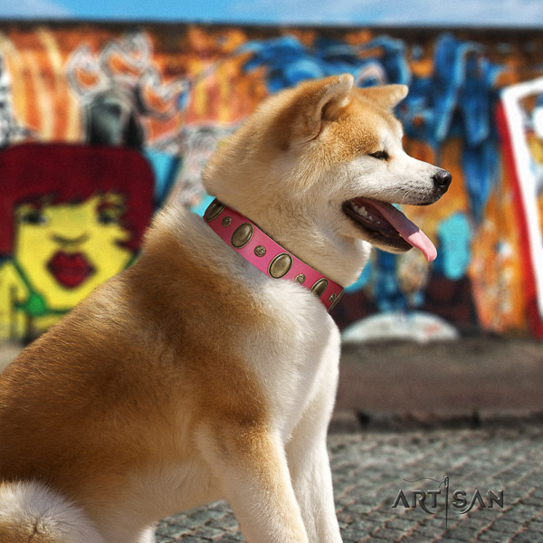 Akita Inu everyday walking genuine leather collar with decorations for your canine