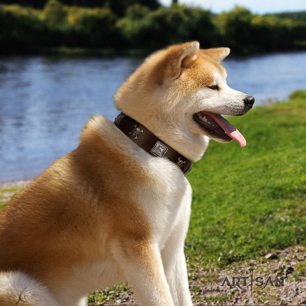 Akita Inu daily use full grain natural leather collar with studs for your pet