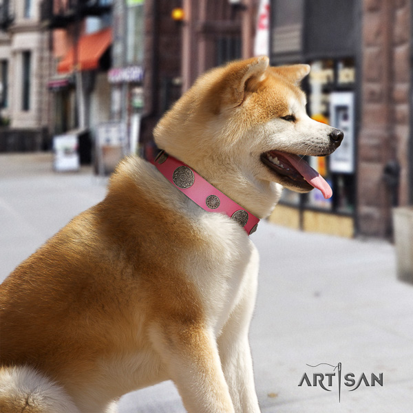 Akita Inu daily use full grain genuine leather collar with decorations for your canine