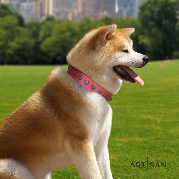 Akita Inu walking natural leather collar with adornments for your pet