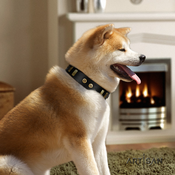 Akita Inu easy wearing full grain natural leather collar with decorations for your dog
