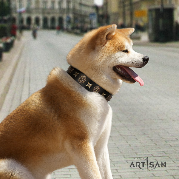 Akita Inu daily use full grain genuine leather collar with studs for your dog