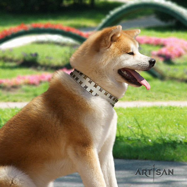 Akita Inu stylish walking full grain leather collar with decorations for your pet