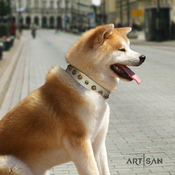 Akita Inu handy use full grain leather collar with embellishments for your doggie
