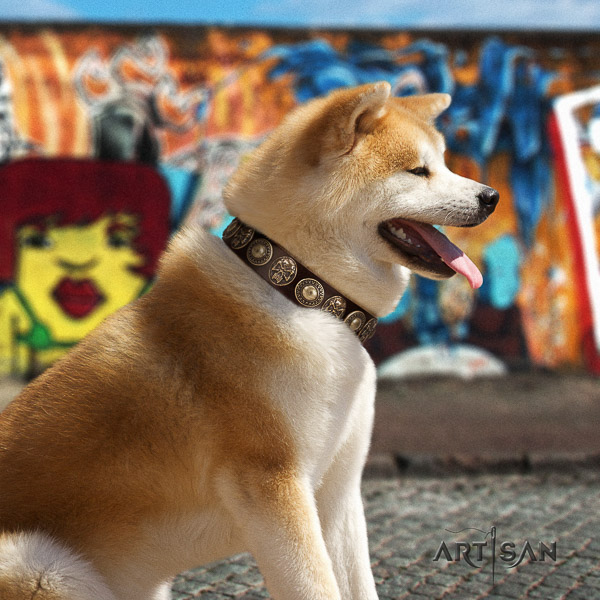 Akita Inu daily use full grain natural leather collar with decorations for your pet