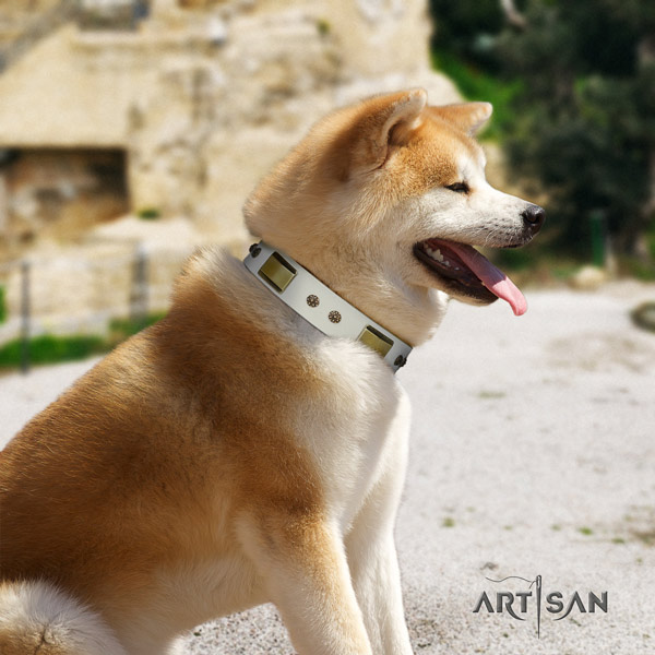 Akita Inu leather dog collar with stylish design embellishments