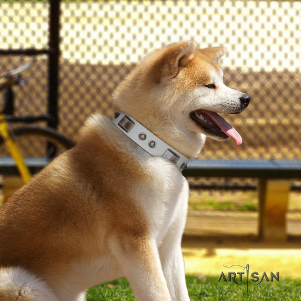 Akita Inu studded full grain leather dog collar with fashionable decorations