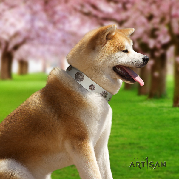 Akita Inu daily use full grain natural leather collar with embellishments for your dog