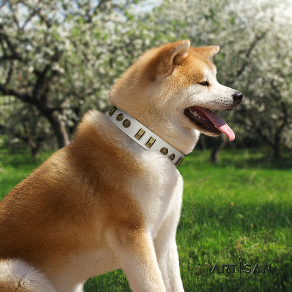 Akita Inu genuine leather dog collar with significant decorations