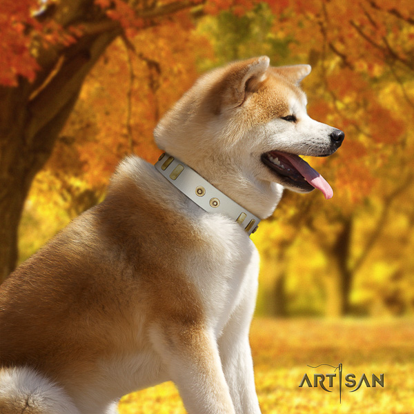 Akita Inu easy wearing full grain natural leather collar with studs for your pet