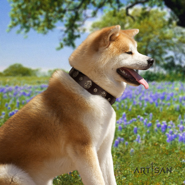Akita Inu easy wearing leather collar with adornments for your canine