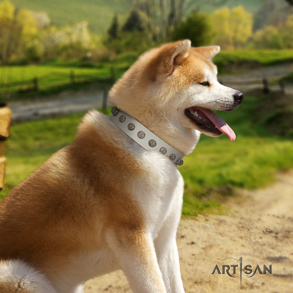 Akita Inu everyday walking genuine leather collar with decorations for your dog