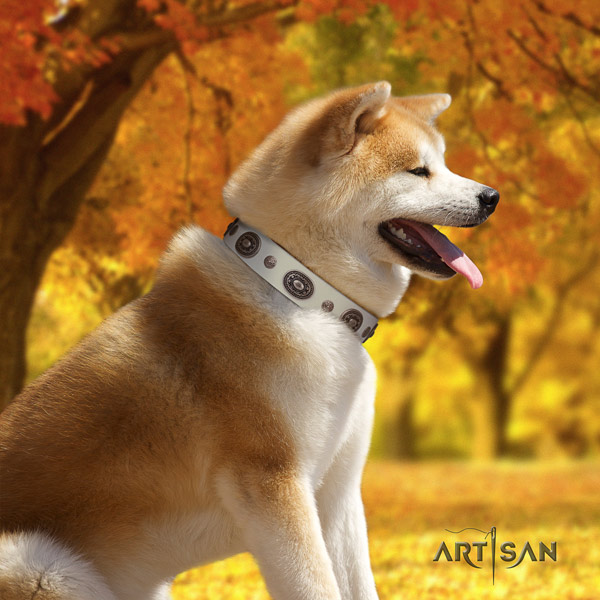 Akita Inu full grain leather dog collar with inimitable decorations