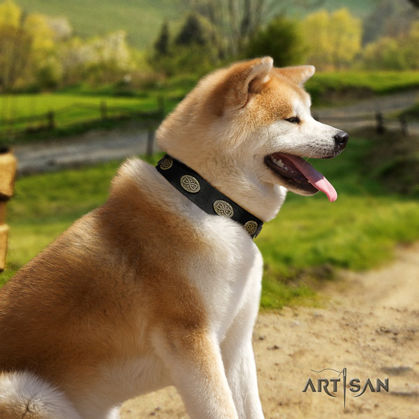 Akita Inu full grain leather dog collar with designer adornments