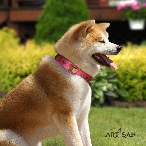 Akita Inu full grain leather dog collar with extraordinary studs
