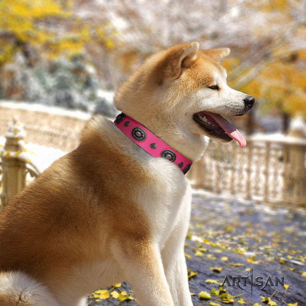 Akita Inu leather dog collar with stylish decorations