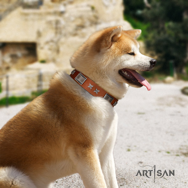 Akita Inu decorated genuine leather dog collar with awesome adornments