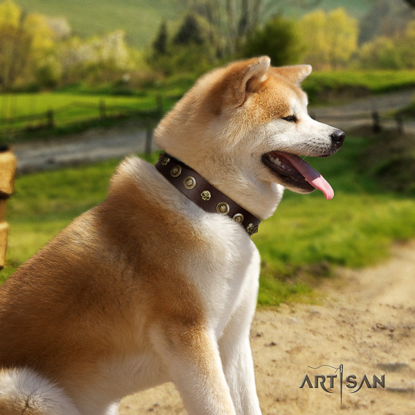Akita Inu easy wearing full grain natural leather collar with decorations for your doggie