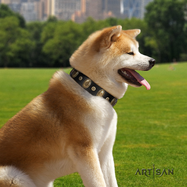 Akita Inu handy use full grain natural leather collar with decorations for your four-legged friend