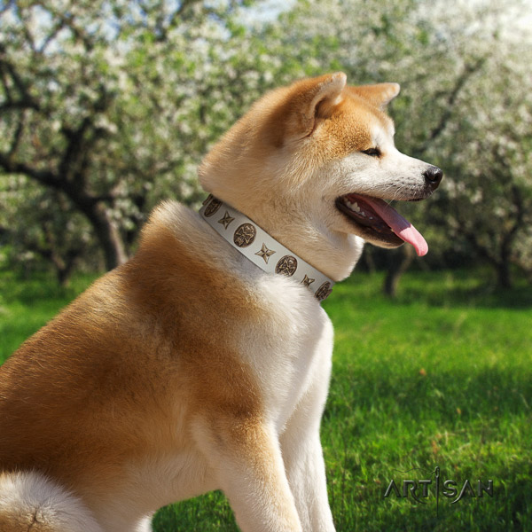 Akita Inu easy wearing full grain natural leather collar with embellishments for your canine