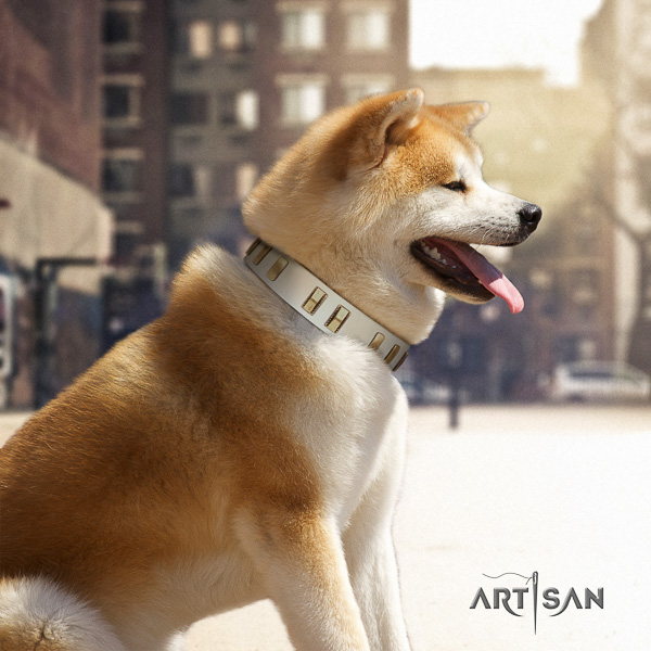 Akita Inu comfy wearing natural leather collar with adornments for your four-legged friend