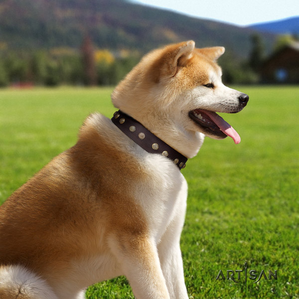 Akita Inu full grain leather dog collar with amazing decorations