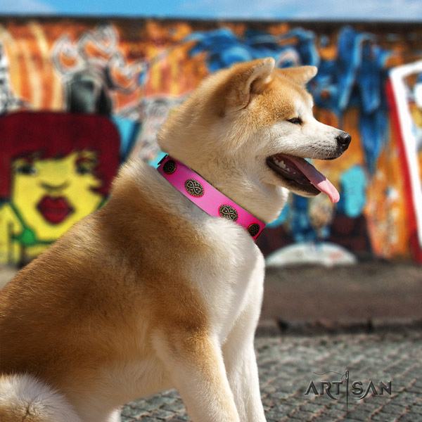 Akita Inu full grain leather dog collar with stylish decorations
