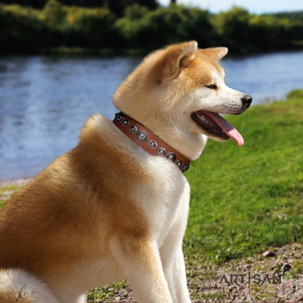 Akita Inu inimitable full grain natural leather collar for walking