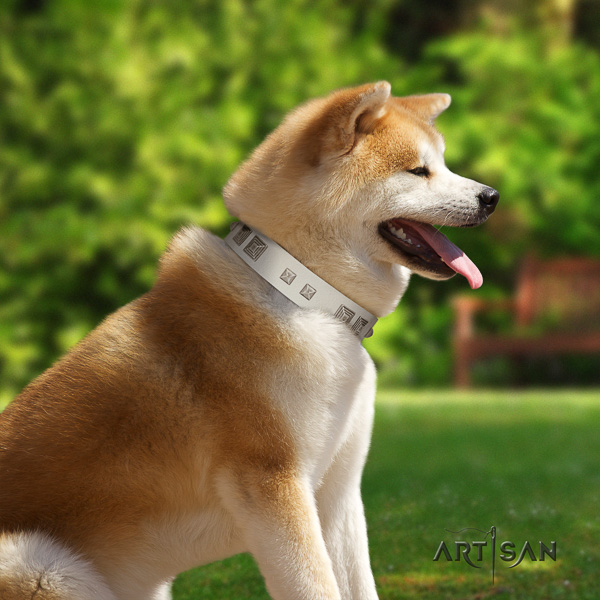 Akita Inu everyday walking natural leather collar with embellishments for your doggie