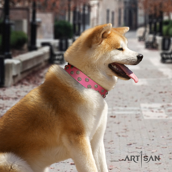 Akita Inu handy use full grain genuine leather collar with embellishments for your dog