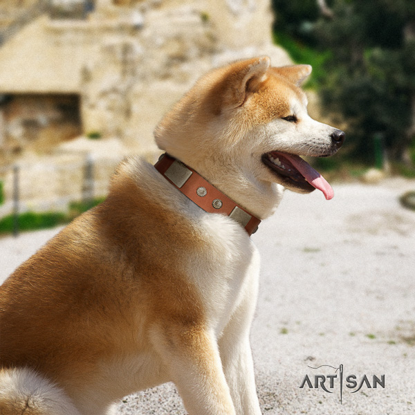 Akita Inu everyday walking full grain natural leather collar with adornments for your dog