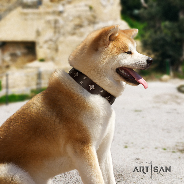 Akita Inu daily use full grain natural leather collar with adornments for your canine