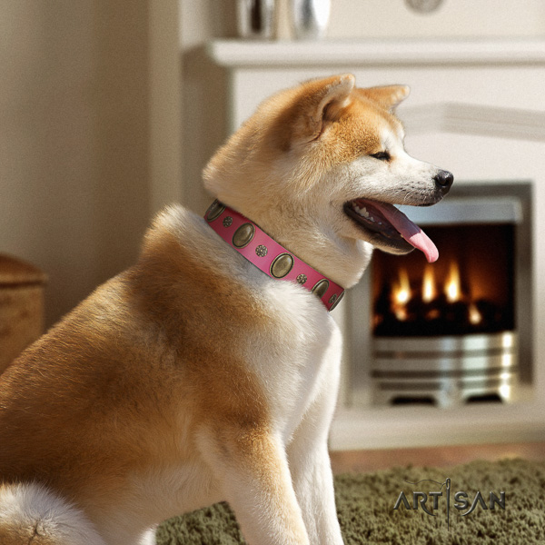 Akita Inu fancy walking leather collar with adornments for your canine
